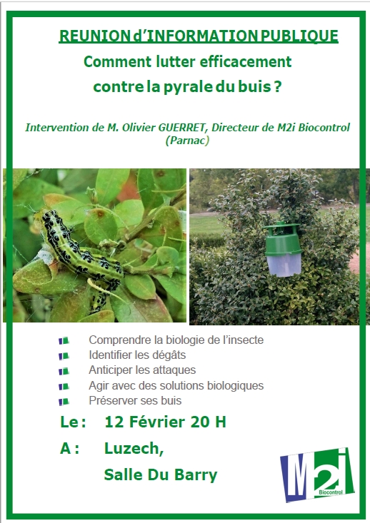 reunion pyrale buis